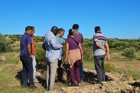 Breve guia para a excursão na região de Kairouan