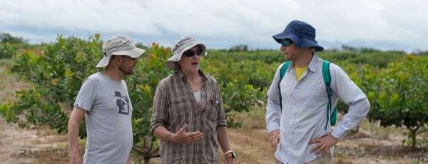 Representantes do Cirad conhecem áreas irrigadas do Ceará (FOTO: Juliana Lima)