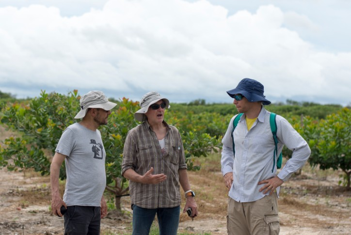 Cooperação entre Funceme e Cirad visa a promoção do desenvolvimento do campo por meio da pesquisa científica