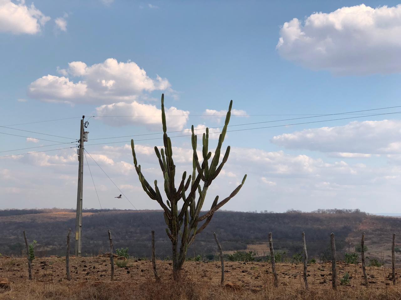 Poucas nuvens permitirá o céu mais claro nos próximos dias (FOTO: Marciel Bezerra)