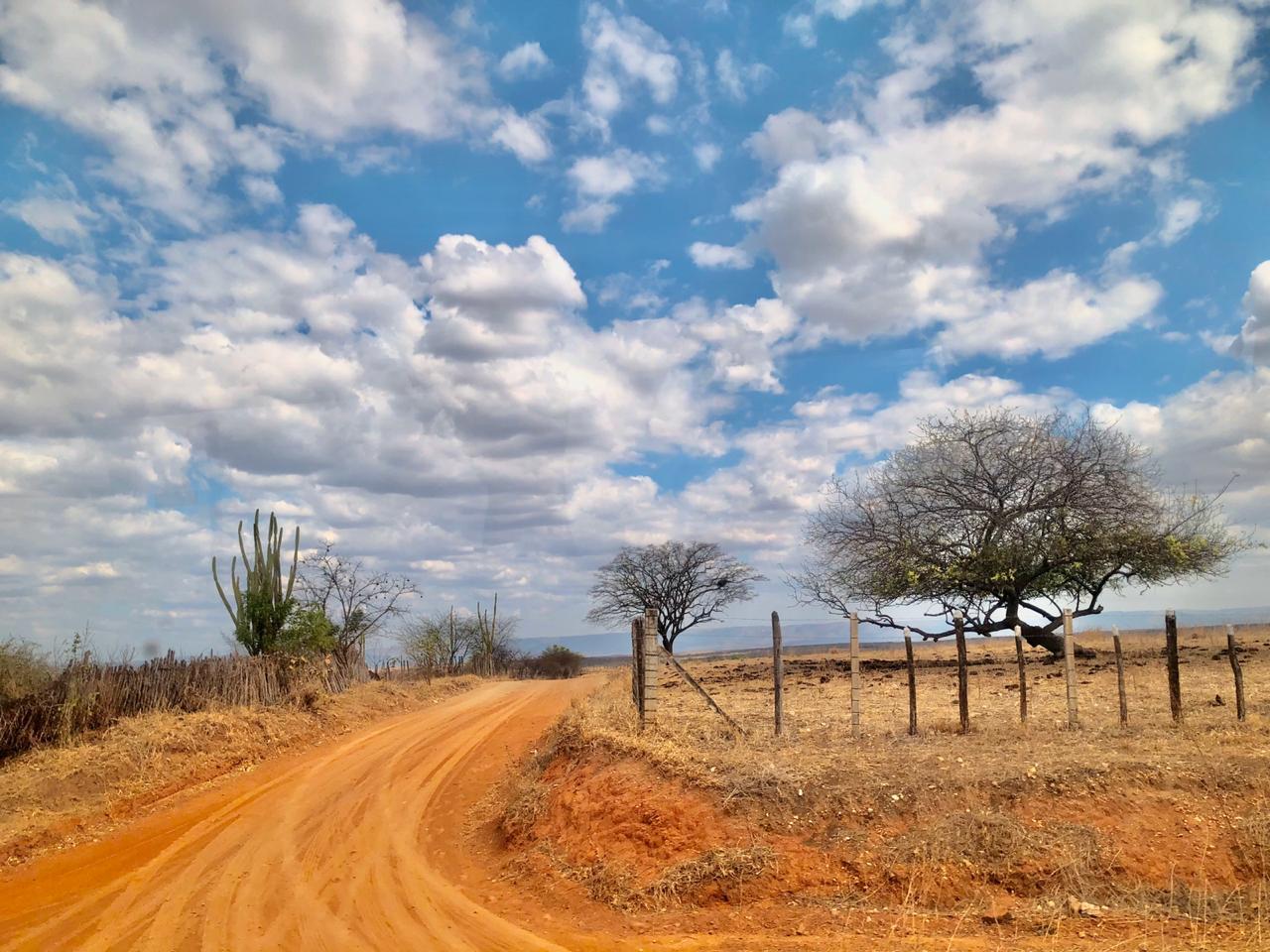 Condições de tempo reforçam tendência de céu mais claro (FOTO: Marciel Bezerra)
