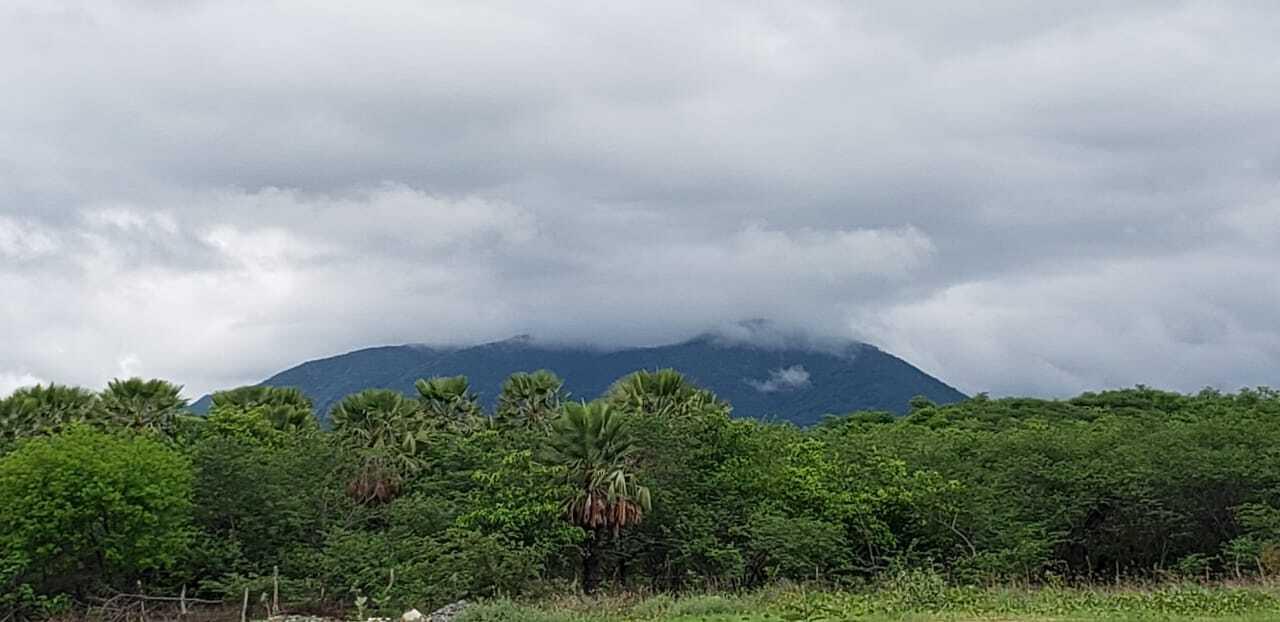 Entre quinta e sexta, choveu em mais de 100 municípios do Cerá (FOTO: Liduina Gomes)