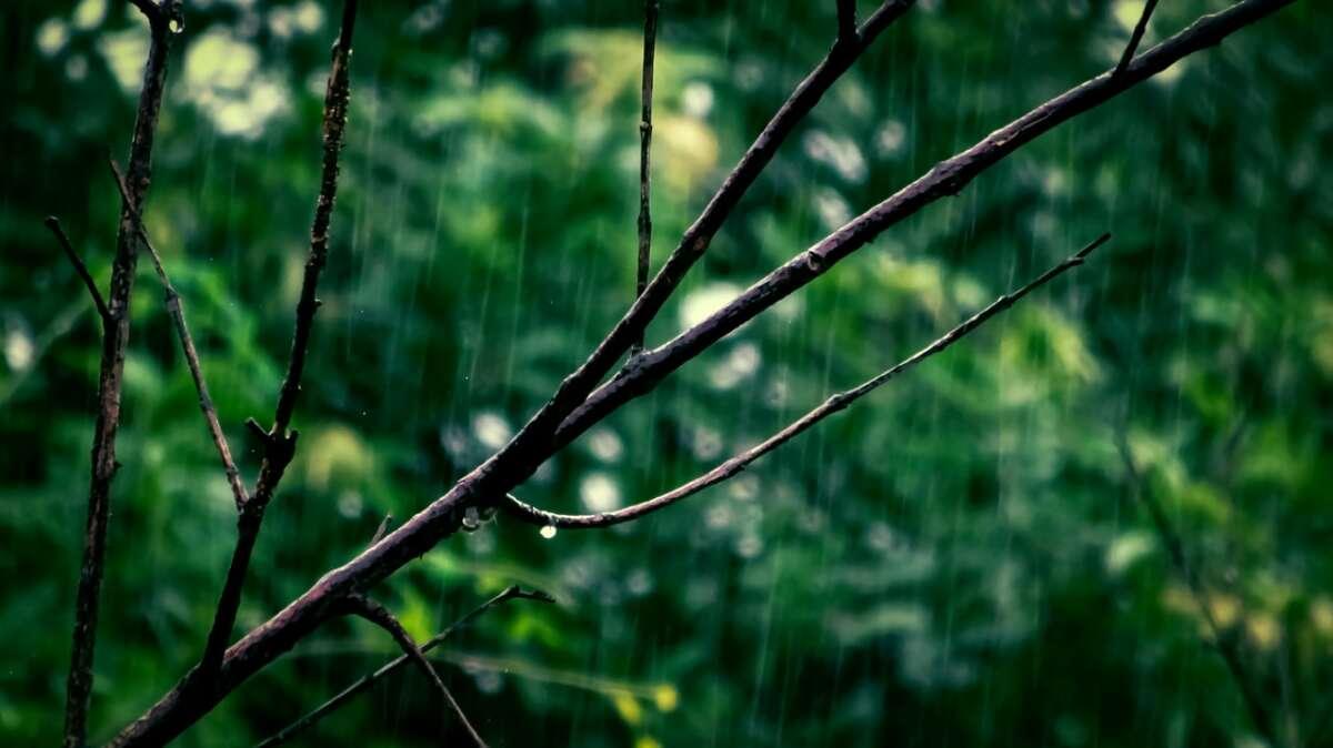 Todas as macrorregiões tiveram chuvas (FOTO: Reprodução)