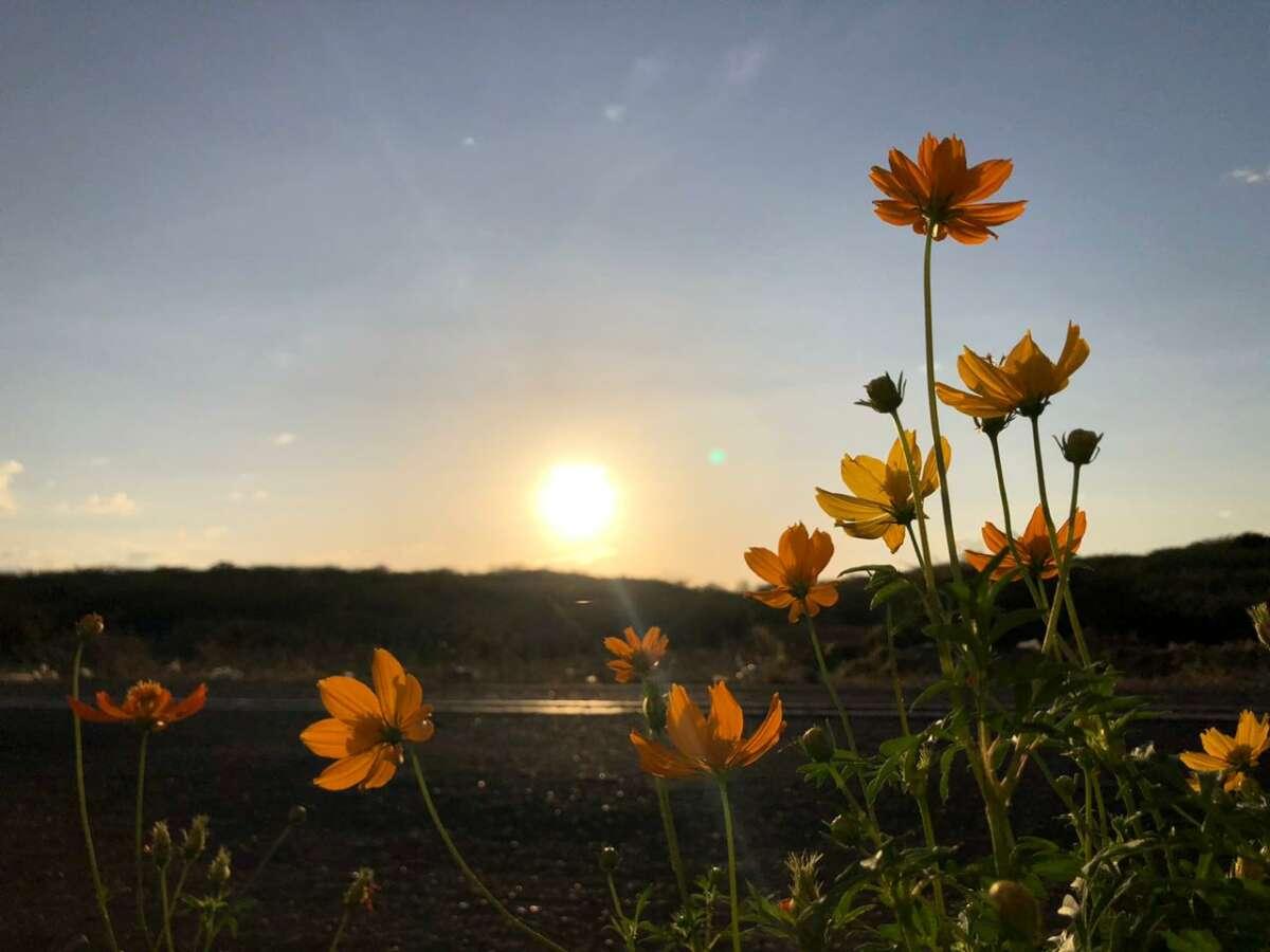 Agosto segue dentro da normalidade (FOTO: Marciel Bezerra)