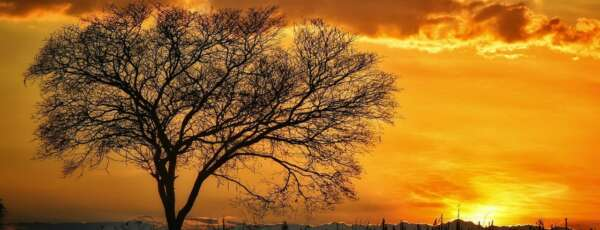 Céu deve permancer claro em maior parte do dia (FOTO: Liduina Gomes)