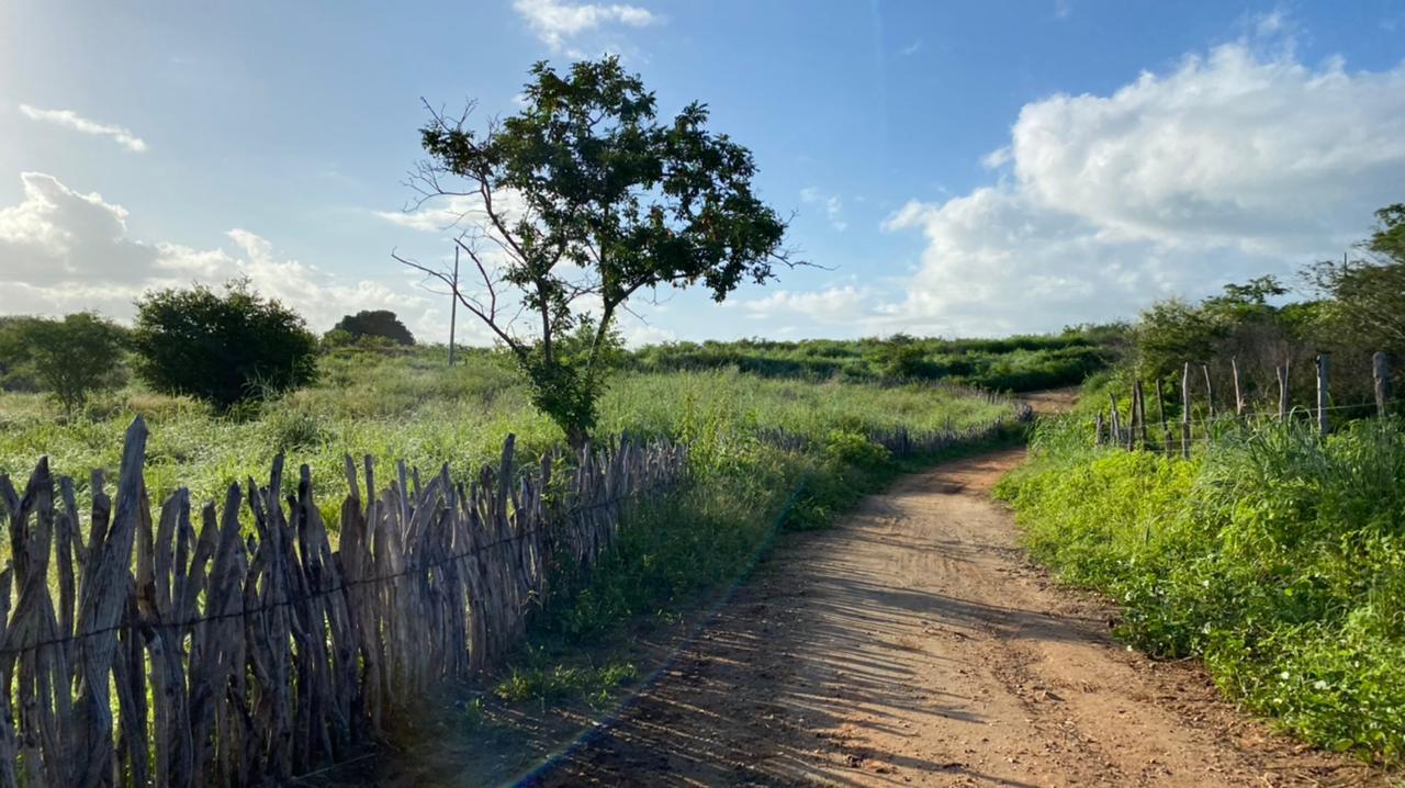 Áreas mais ao sul do Estado deverão  apresentar tempo ainda mais estável (FOTO: Marciel Bezerra)