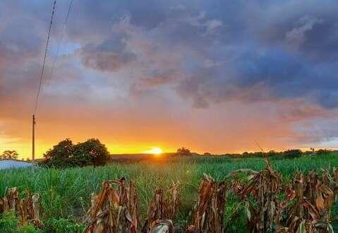 No Ceará como um todo, o sol permanecerá em evidência (FOTO: Ricardo Paiva)