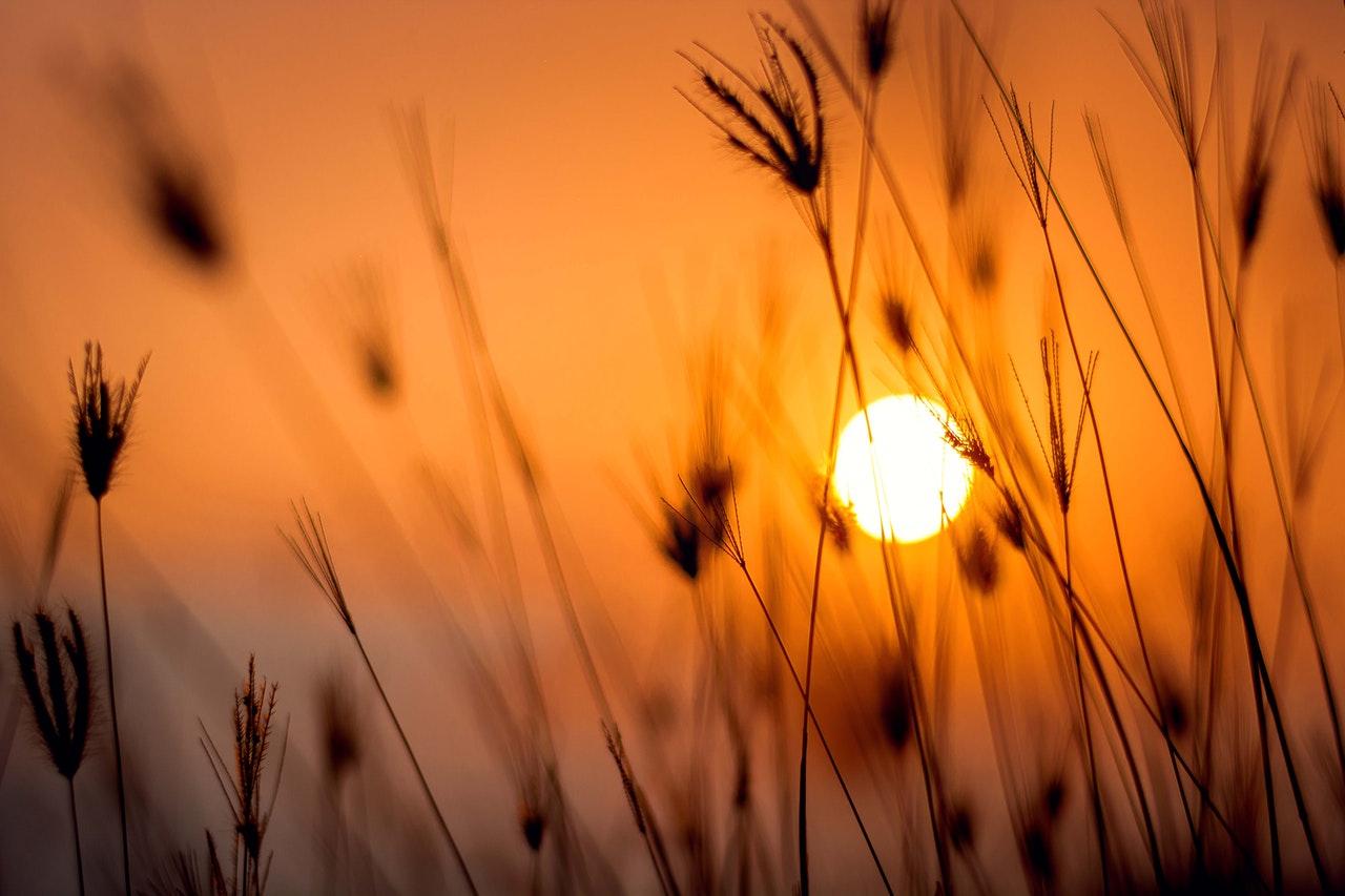 Maior sensação de calor é também comum nesta época (FOTO: Darwis Alwan)