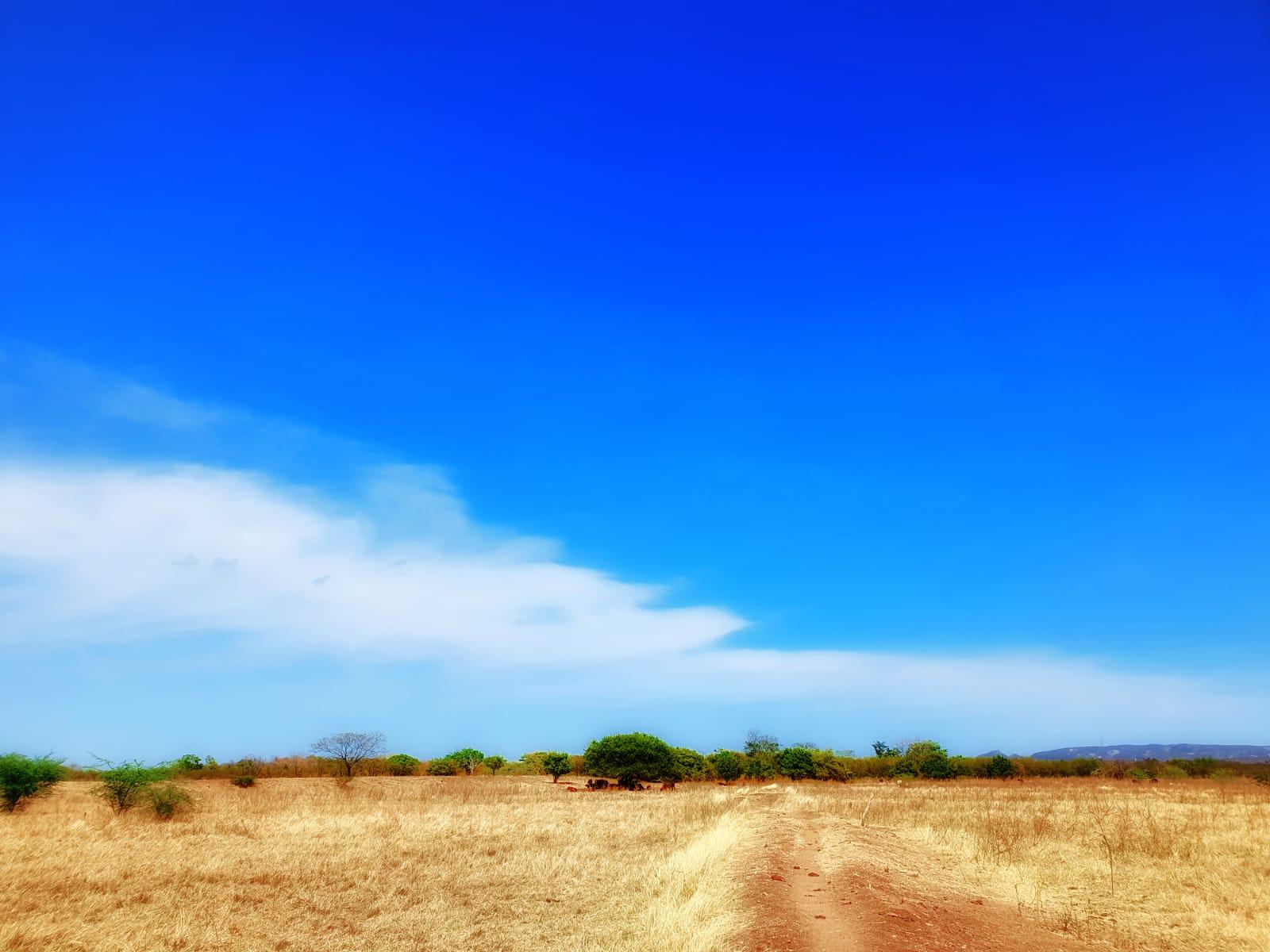 Poucas nuvens, tempo seco e rajadas de até 50 km/h são esperados neste fim de semana